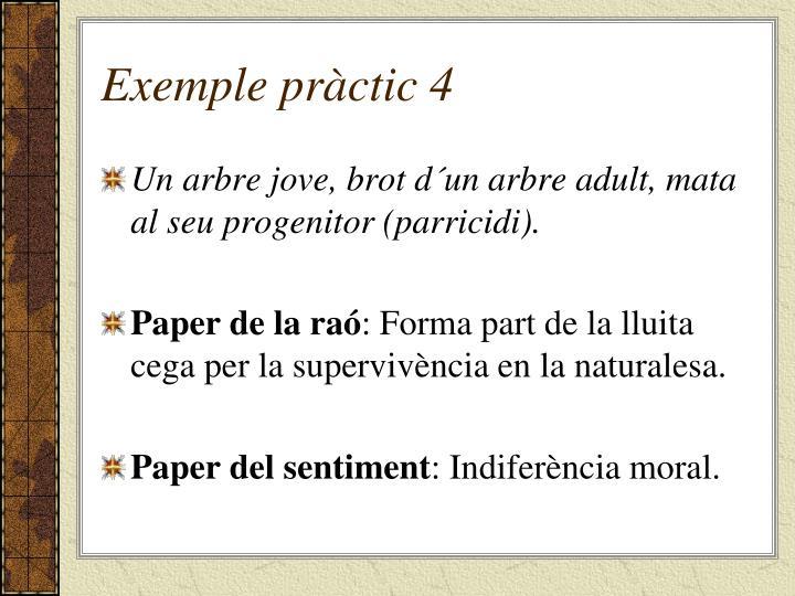 Exemple pràctic 4