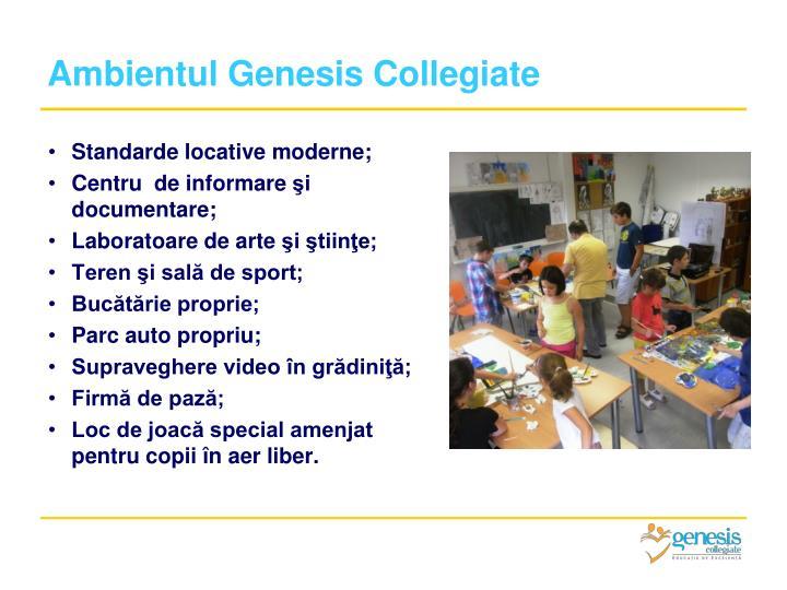 Ambientul Genesis Collegiate