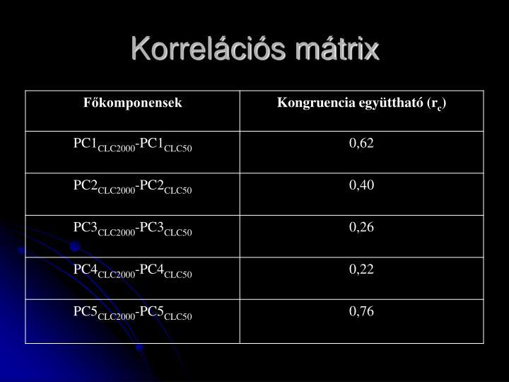 Korrelációs mátrix