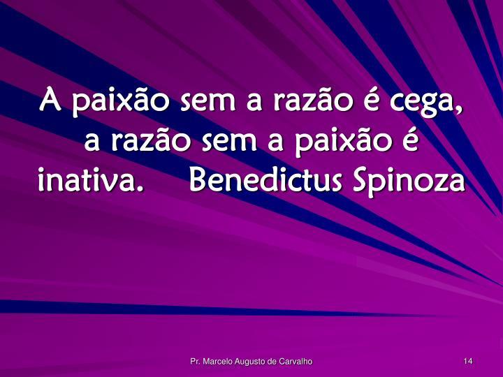 A paixão sem a razão é cega, a razão sem a paixão é inativa.Benedictus Spinoza