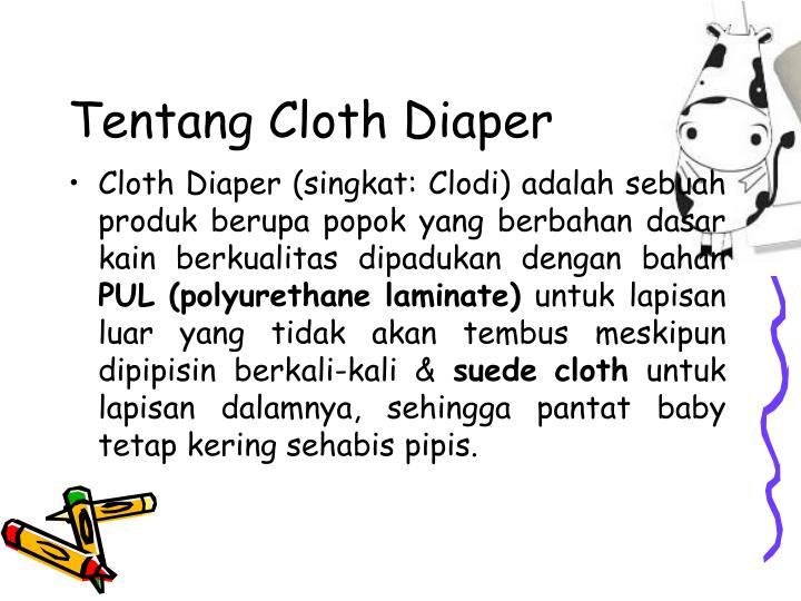 Tentang Cloth Diaper
