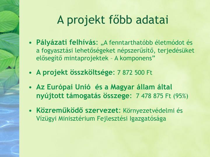 A projekt főbb adatai