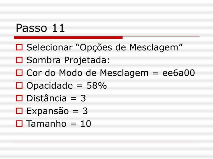Passo 11