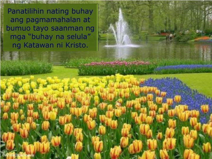 """Panatilihin nating buhay ang pagmamahalan at bumuo tayo saanman ng mga """"buhay na selula"""" ng Katawan ni Kristo."""