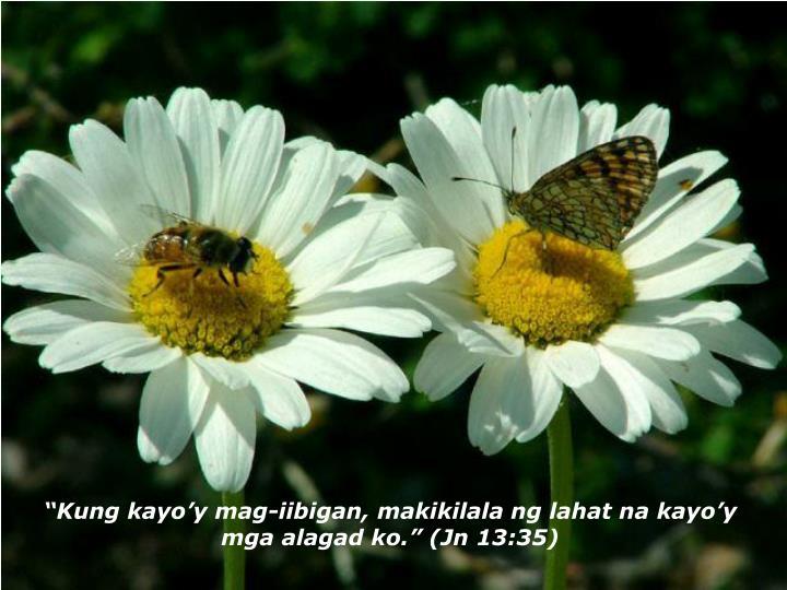 """""""Kung kayo'y mag-iibigan, makikilala ng lahat na kayo'y mga alagad ko."""" (Jn 13:35)"""