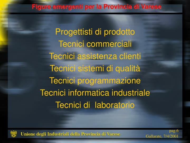 Figure emergenti per la Provincia di Varese