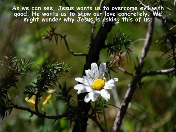 As we can see, Jesus wants us to overcome evil with good. He wants us to show our love concretely.