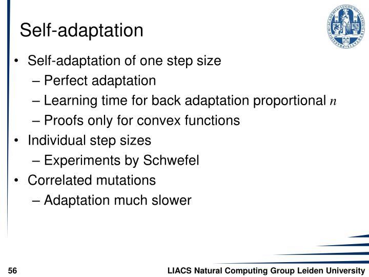 Self-adaptation