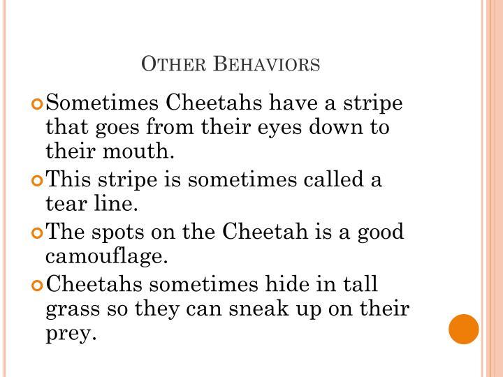 Other Behaviors