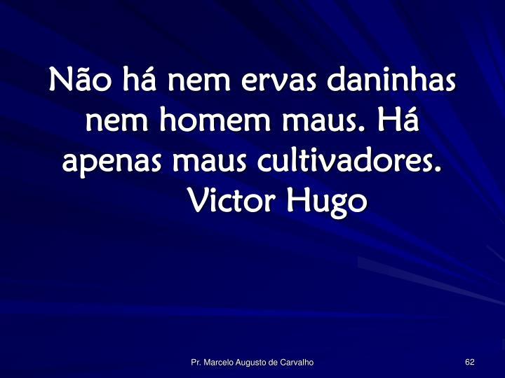 Não há nem ervas daninhas nem homem maus. Há apenas maus cultivadores.Victor Hugo