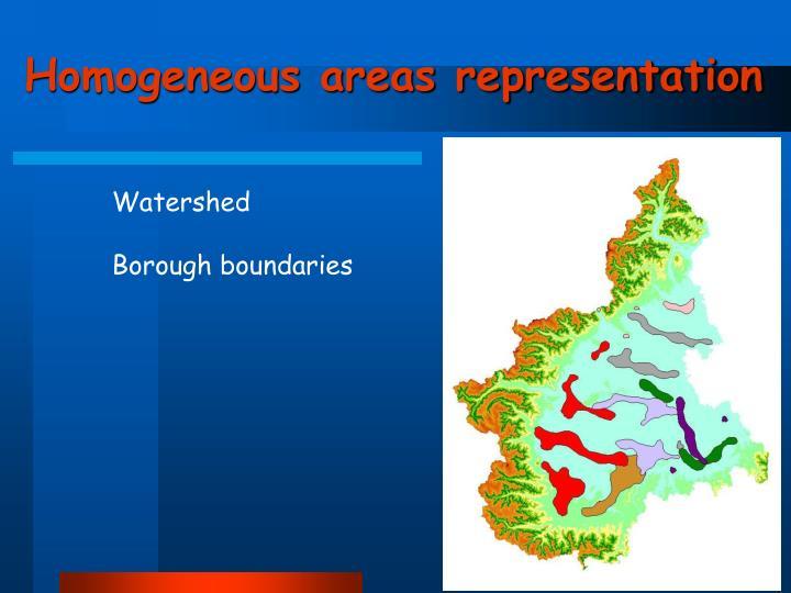Homogeneous areas representation