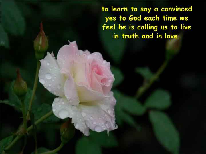 to learn to say a convinced yes to God each time we feel he is calling us to live in truth and in love.