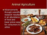 animal agriculture1