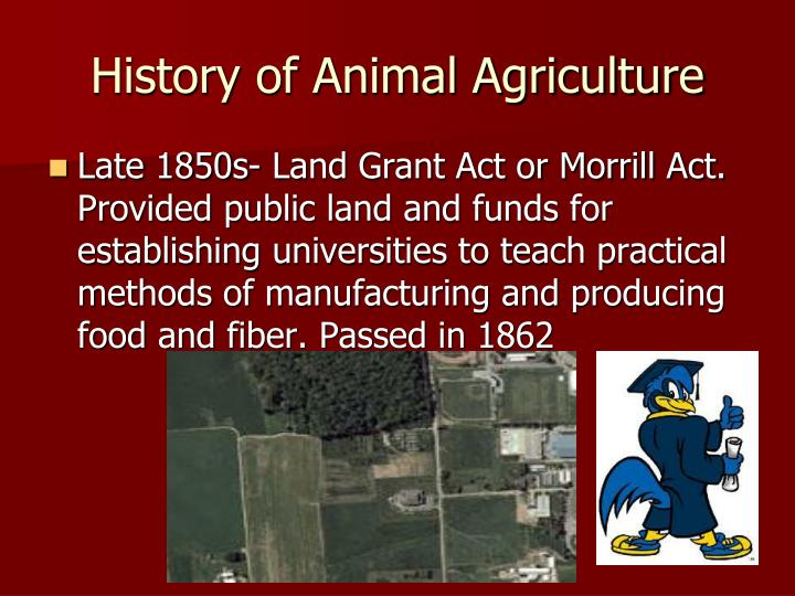 History of Animal Agriculture
