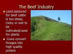 the beef industry1