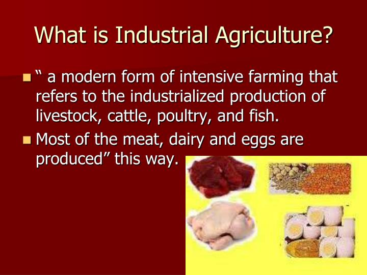 What is Industrial Agriculture?
