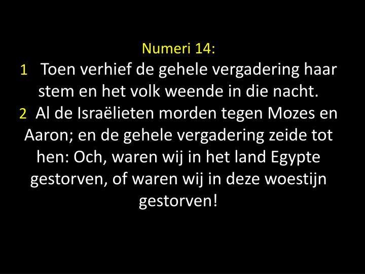 Numeri 14: