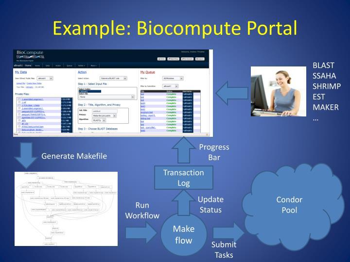 Example: Biocompute Portal