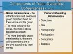 components of team dynamics cohesiveness 1 of 2