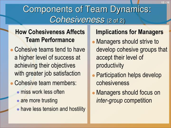 team dynamics and the effects in