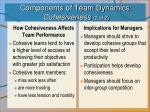 components of team dynamics cohesiveness 2 of 2
