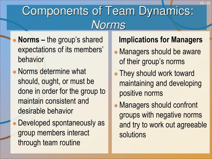 Components of Team Dynamics: