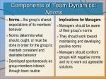 components of team dynamics norms