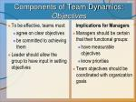 components of team dynamics objectives