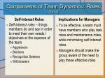 components of team dynamics roles 3 of 3