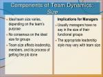 components of team dynamics size