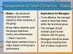 components of team dynamics status