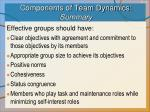 components of team dynamics summary