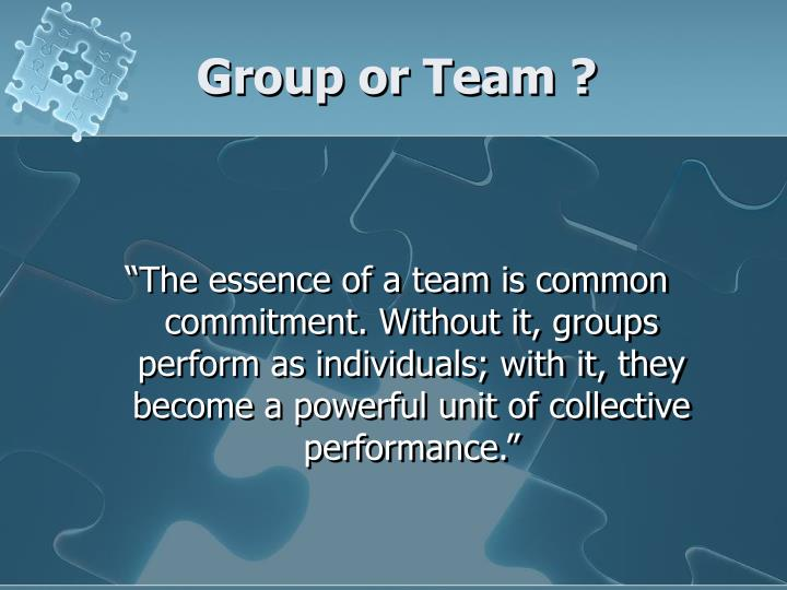 Group or Team ?