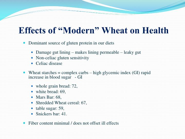 """Effects of """"Modern"""" Wheat on Health"""
