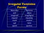 irregular feminine forms1