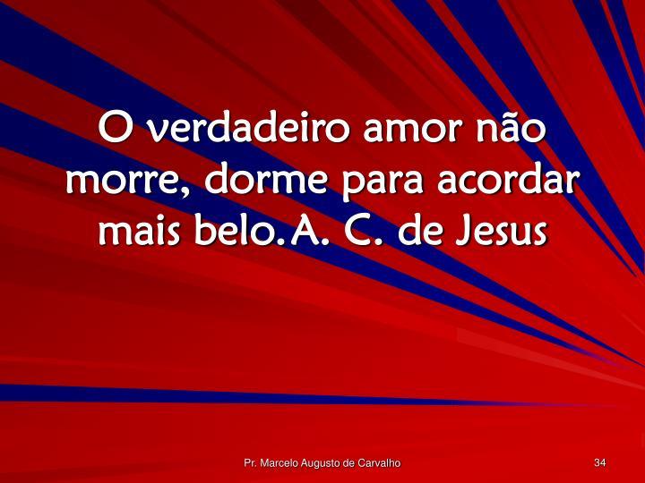 O verdadeiro amor não morre, dorme para acordar mais belo.A. C. de Jesus