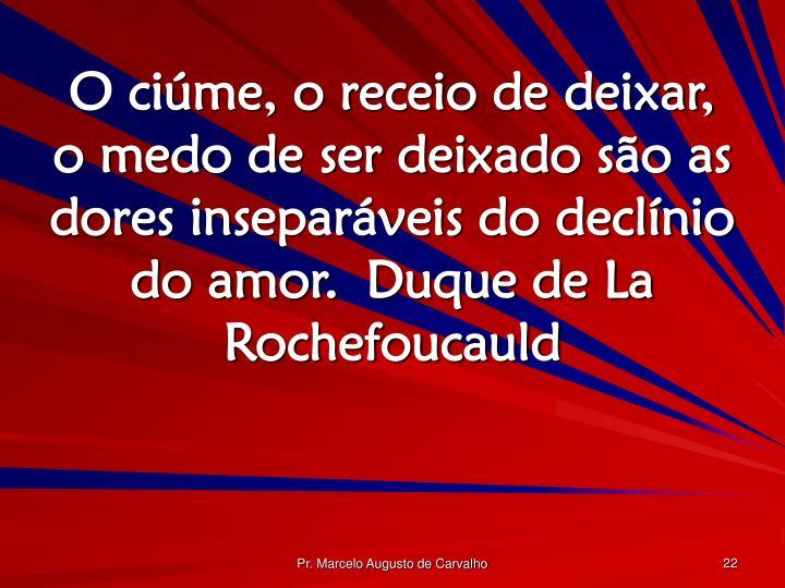 O ciúme, o receio de deixar, o medo de ser deixado são as dores inseparáveis do declínio do amor.Duque de La Rochefoucauld