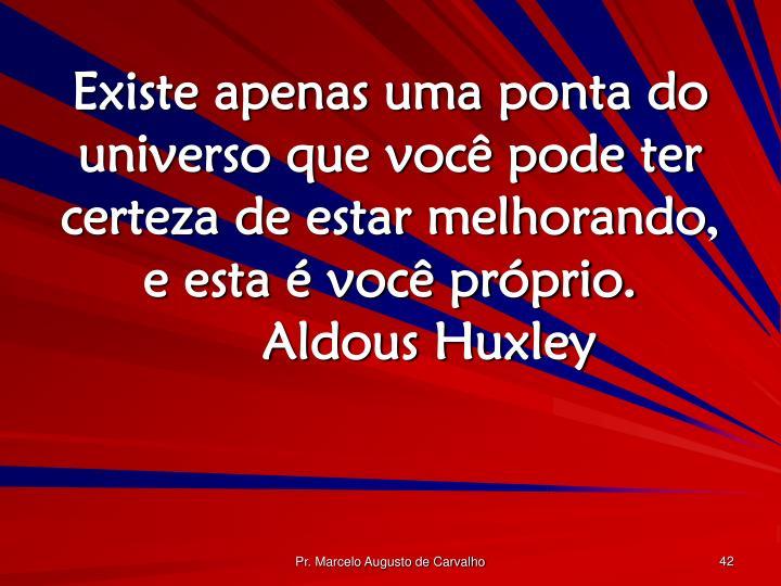 Existe apenas uma ponta do universo que você pode ter certeza de estar melhorando, e esta é você próprio.Aldous Huxley