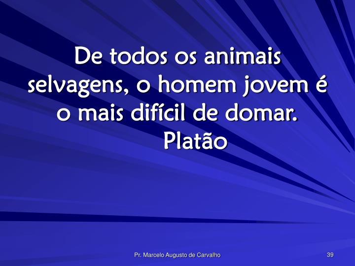 De todos os animais selvagens, o homem jovem é o mais difícil de domar.Platão