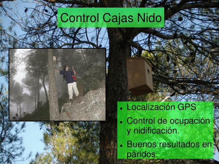 Control Cajas Nido
