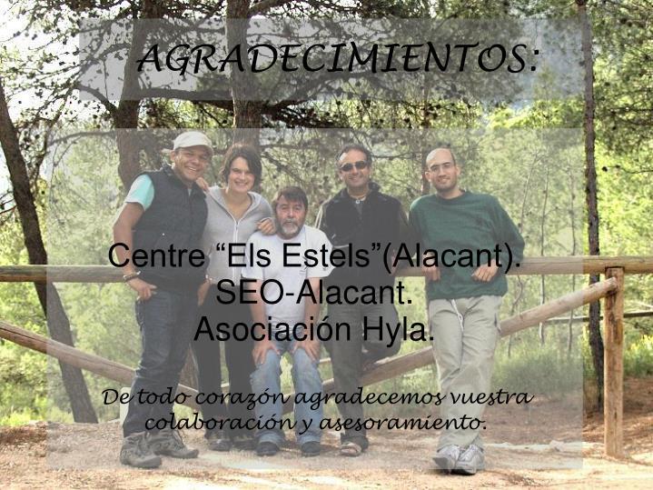 """Centre """"Els Estels""""(Alacant)."""