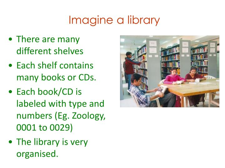 Imagine a library