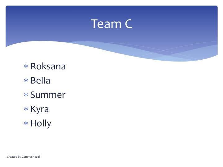 Team C