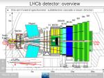 lhcb detector overview