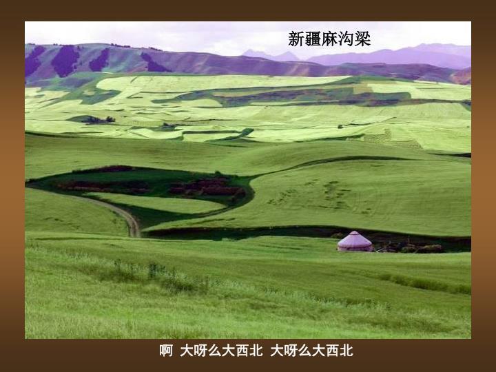 新疆麻沟梁