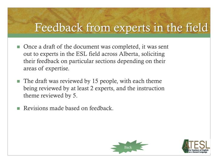 Feedback from experts in the field