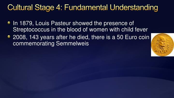 Cultural Stage 4: Fundamental Understanding