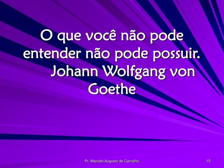 O que você não pode entender não pode possuir.Johann Wolfgang von Goethe