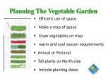 planning the vegetable garden
