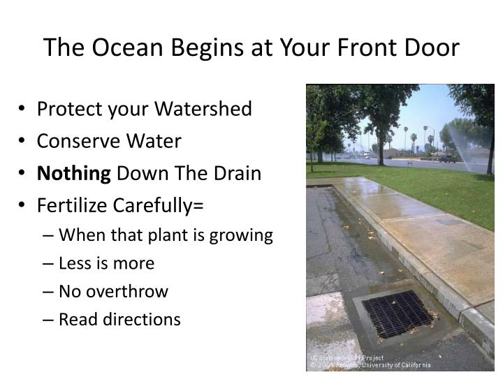 The Ocean Begins at Your Front Door